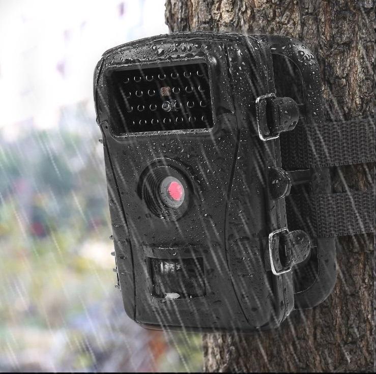人や動物が発する赤外線に反応して自動撮影するトレイルカメラ・赤外線LEDライト搭載で暗闇でも撮影可能【WTwisdom・Together】