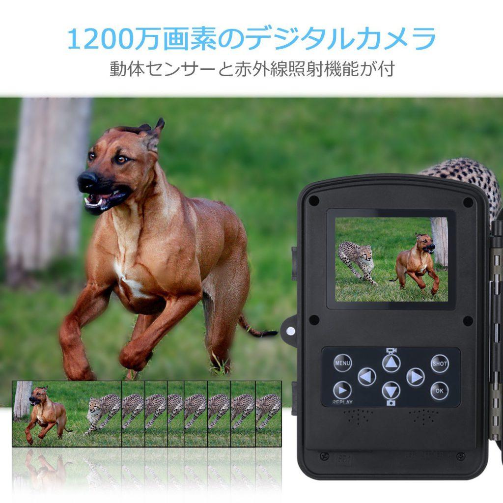 【Aizhy】赤外線照射機能付きの自動録画機能のトレイルカメラの国内最安