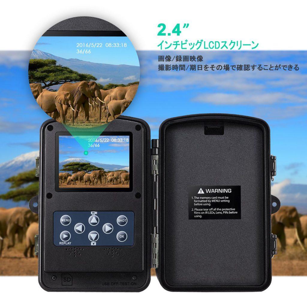 【Qtuo】低価格で6ヶ月間電池交換不要の赤外線照射のトレイルカメラ